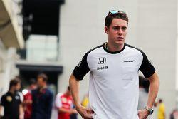 Stoffel Vandoorne, Pilote de réserve et d'essais McLaren