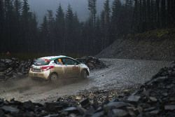 Fabio Andolfi and Simone Scattolin, Peugeot 208 R3