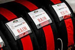蒂亚戈·蒙特罗,本田Civic WTCC, 本田JAS车队,轮胎
