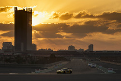 #333 V8 Racing Chevrolet Corvette: Nicky Pastorelli, Alex van t'Hoff, Rick Abresch, Wolf Nathan, Mig
