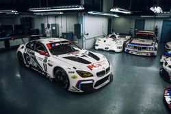 The 100th anniversary BMW M6 GTLM