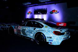 The 100th anniversary BMW M6 GTLM livery