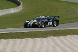 #11 Primetime Race Group Dodge Viper Competition Coupe: Joel Feinberg, Chris Hall