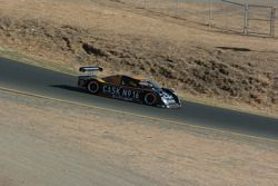#16 Cheever Racing Pontiac Coyote: Antonio Garcia, Christian Fittipaldi