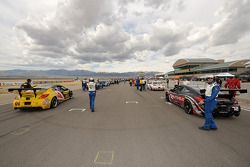 Pre-race grid activity