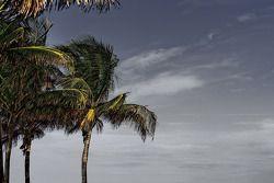 Visite de Miami South Beach