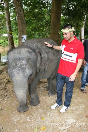 Satrio Hermanto, driver of A1 Team Indonesia at the Gandah Elephant Orphanage