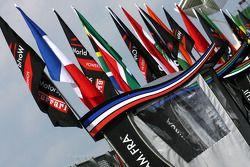 A1 flags
