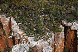 Port Arthur, Australia: a Competitor trek's along the coastline