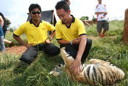 Fairuz Fauzy et Aaron Lim, pilotes A1 Team Malaysia dans la réserve naturelle Rhino & Lion