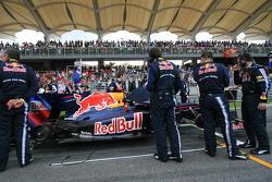 Red Bull mechanic