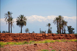 Construction and preparation for the Marrakech City Circuit