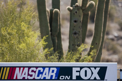 L'ambiance du Phoenix International Raceway