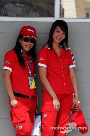 Demoiselles du Speedcar
