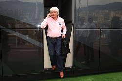 Bernie Ecclestone Bernie Ecclestone goes to FOTA meeting, Flavio Briatore yacht