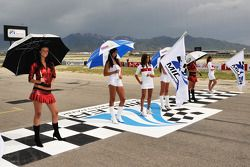 Attractive girls guard the grid