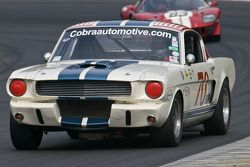 Hal McCarty, 1966 Shelby GT350
