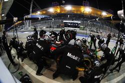 Stoffel Vandoorne, McLaren MP4-31 in de pits