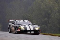 #11 Primetime Race Group Dodge Viper Competition Coupe: Joel Feinberg, Chris Hall