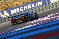 #44 Matech GT Racing Ford GT: Thomas Mutsch, Herni Moser