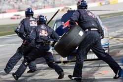 Pitstop Scott Speed, Red Bull Racing Team Toyota