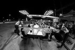Pitstop #16 Dyson Racing Team Lola B09 86 Mazda: Chris Dyson, Guy Smith, Andy Meyrick