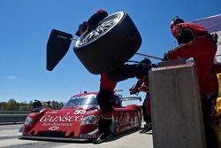 Passage aux stands pour #99 GAINSCO/ Bob Stallings Racing Chevrolet Riley: Jon Fogarty, Alex Gurney