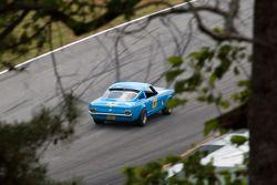 #101 1965 Mustang: Tim Hollet