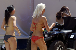 A hot day in the paddock for those two paddock beauties