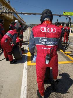 Audi Sport Team Phoenix membres de l'équipe