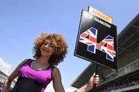Gadis grid,for Lewis Hamilton, Mercedes AMG F1