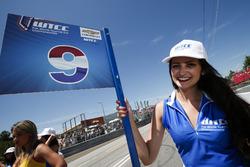 Gadis grid,of Tom Coronel, Roal Motorsport, Chevrolet RML Cruze TC1