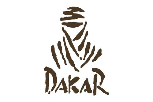 2010 Dakar final standings - Car
