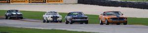 Mustang lead