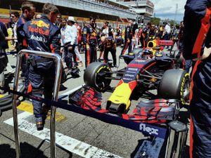 Max Verstappen on the grid