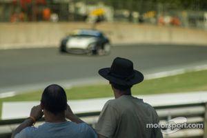 BTCC Spectators