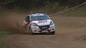 Nikolay Gryazin / Yaroslav Fedorov / Peugeot 208 R2 / Sports Racing Technologies