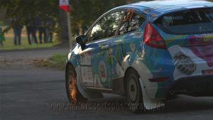 Gustav Kruuda / Ken Järveoja / Ford Fiesta R2 / ME-3 Rally Team