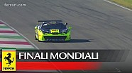 Ferrari Challenge - Prinoth wins Coppa Shell World Championship