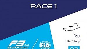 فورمولا 3: السباق السابع من موسم 2016 / السباق الأول في بو