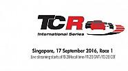 LIVE - La Course 1 de TCR à Singapour