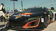 HPD Trackside -- IMSA 12 Hours of Sebring Acura Race Report