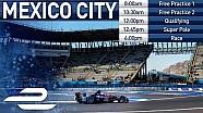 Formula E Kota Meksiko - Latihan, Kualifikasi, Balapan