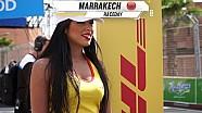 Remproblemen en gekke rijders: het WTCC-weekend van Tom Coronel in Marrakesh