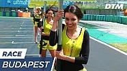 Budapest: Gridgirls vom Winde verweht