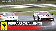 Ferrari Challenge Europe - Silverstone 2018, Trofeo Pirelli race 1